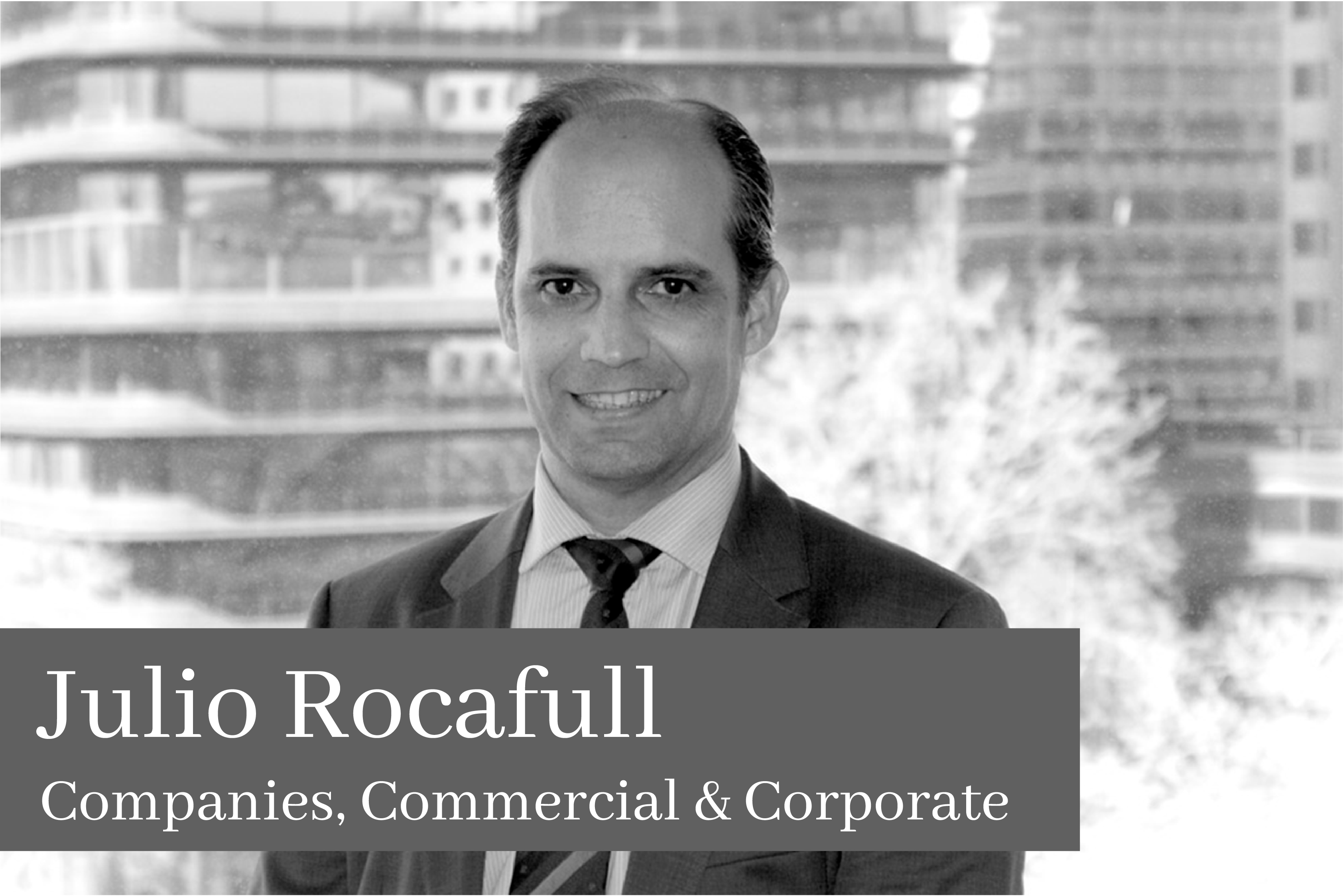Julio Rocafull Companies Commercial & Corporate