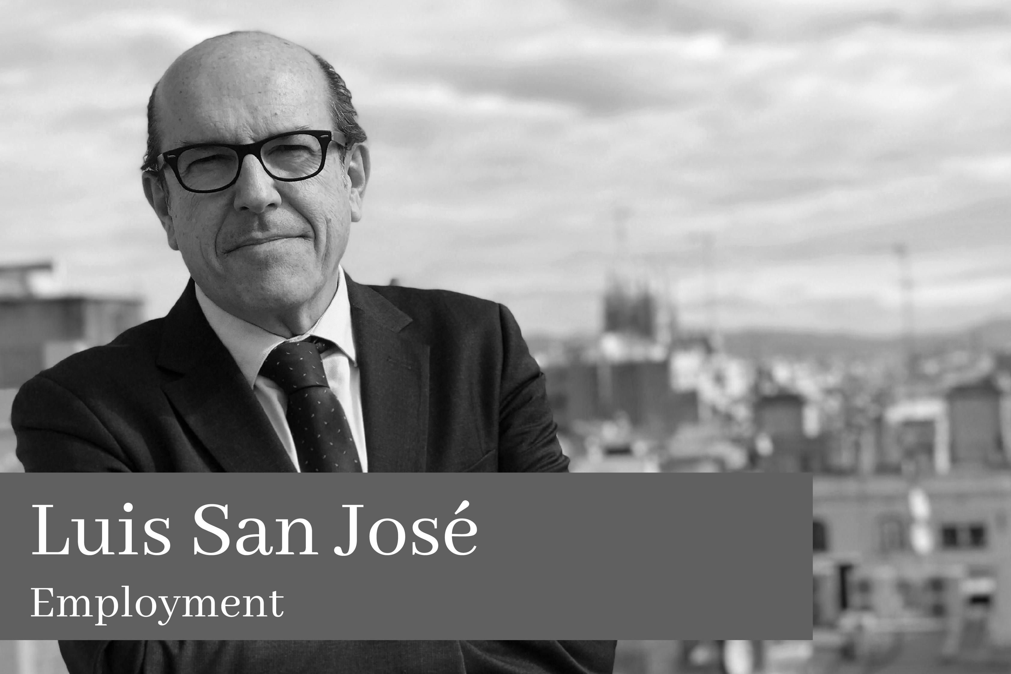 Luis San José Gras Employment