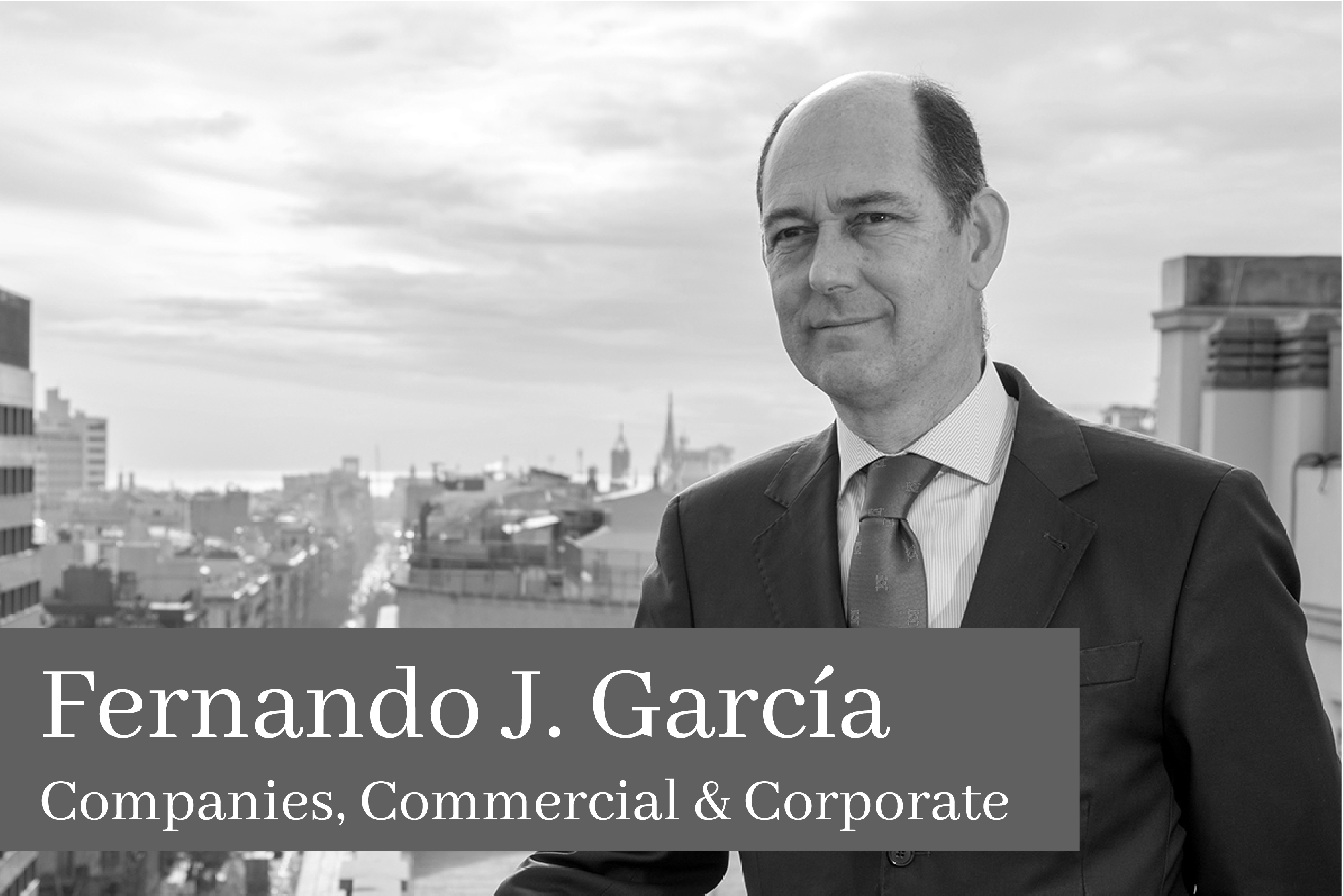 Fernando J. García Martin Companoes Commercial & Corporate