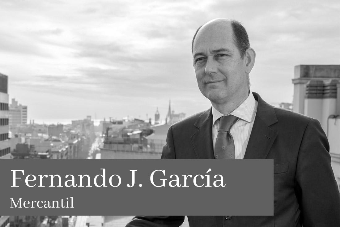 Fernando J Garcia Mercantil