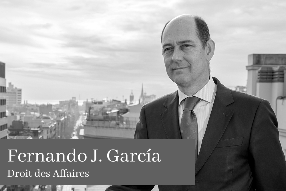 Fernando J Garcia Droit des Affaires L'équipe