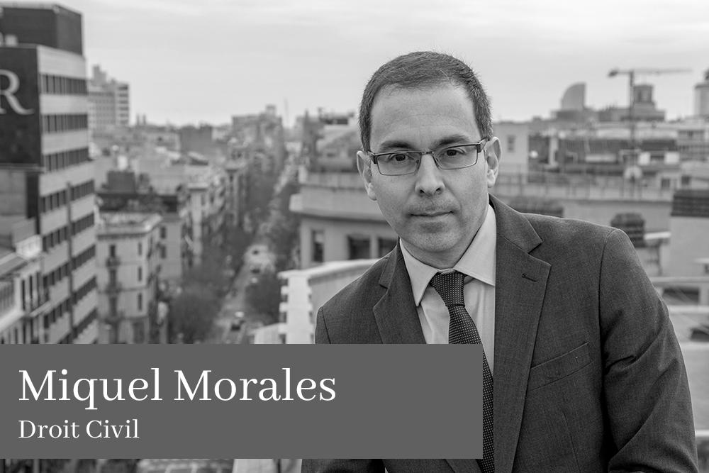 Miquel Morales Droit Civil L'équipe