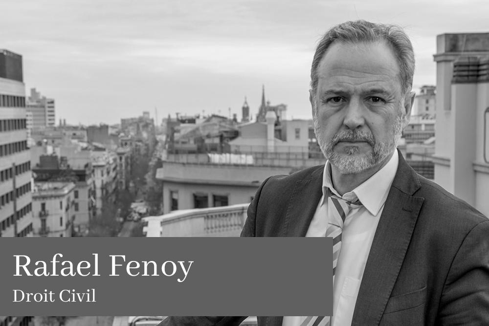 Rafael Fenoy Droit Civil L'équipe